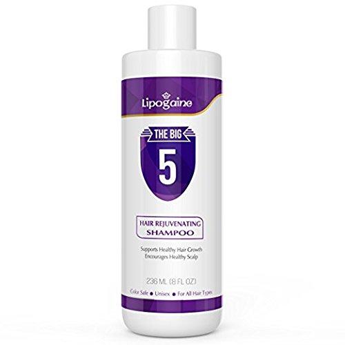 Shampoing Lipogaine Big 5